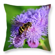 American Hoverfly Throw Pillow