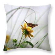 American Lady Butterfly Balancing By The Sea  Throw Pillow