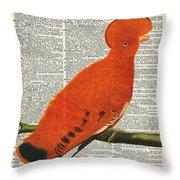 American Martinet Orange Parrot Bird Throw Pillow by Anna W