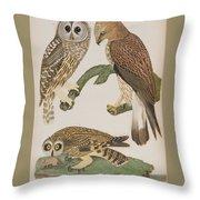 American Owl Throw Pillow