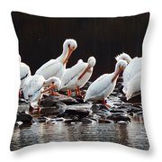 American Pelicans Throw Pillow