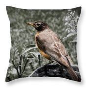 American Red Robin Throw Pillow
