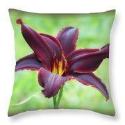 American Revolution With Vignette - Daylily Throw Pillow