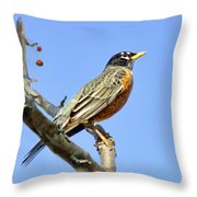American Robin - 1 Throw Pillow