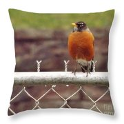 American Robin  In Spring          March            Indiana Throw Pillow
