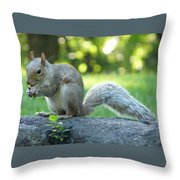 American Squirrel Throw Pillow