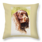 American Water Spaniel Throw Pillow