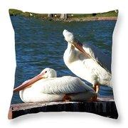 American White Pelican 001 Throw Pillow