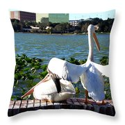 American White Pelican 004 Throw Pillow