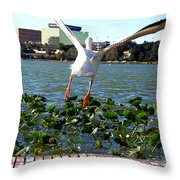 American White Pelican 007 Throw Pillow