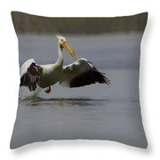 American White Pelican Da Throw Pillow