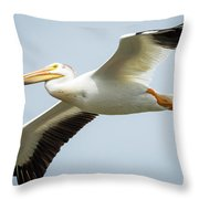 American White Pelican Flyby  Throw Pillow