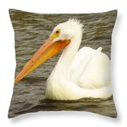 American White Pelican Throw Pillow by Lori Frisch