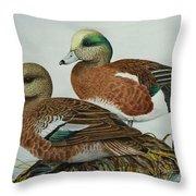 American Widgeons Throw Pillow by Elaine Booth-Kallweit