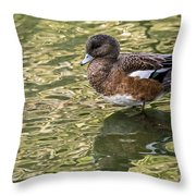 American Wigeon In Autumn Throw Pillow