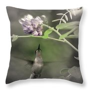 American Wisteria Throw Pillow