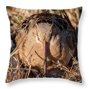 American Woodcock Head On Throw Pillow