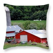Americas Heartland Throw Pillow by DigiArt Diaries by Vicky B Fuller