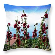 Ameugny Throw Pillow