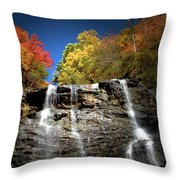 Amicalola Falls Throw Pillow
