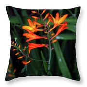 Amid The Tramping Throw Pillow