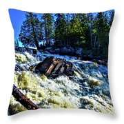 Amincon River Rootbeer Falls Throw Pillow