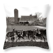Amish Agriculture  Throw Pillow