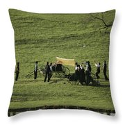 Amish Buggies Anchor A Volleyball Net Throw Pillow by Ira Block