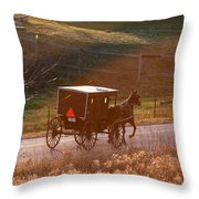 Amish Buggy Afternoon Sun Throw Pillow