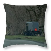Amish Buggy Parked By A Creek Throw Pillow