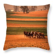 Amish Country Farm Landscape Throw Pillow