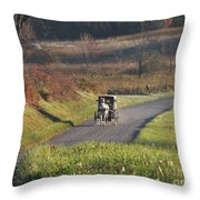Amish Country Horse And Buggy In Autumn Throw Pillow