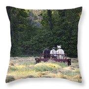 Amish Farmer Raking Hay At Dusk Throw Pillow