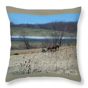 Amish Farming Throw Pillow