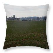 Amish Homestead 166 Throw Pillow