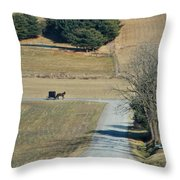 Amish Horse And Buggy On A Country Road Throw Pillow