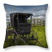 Amish Horse Buggy Throw Pillow