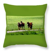 Amish Horse Team Throw Pillow