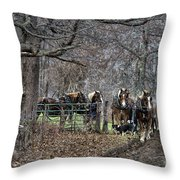 Amish Horses In Harness Throw Pillow