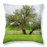 Amish Man And Tree Throw Pillow