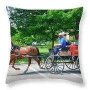 Amish Merchant 5671 Throw Pillow by Guy Whiteley