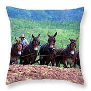 Amish Plowing The Fields With Mules Throw Pillow