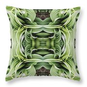Ammonoosuc Green Throw Pillow