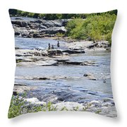 Ammonoosuc Sculptures Throw Pillow