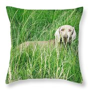 Among The Grasses Throw Pillow