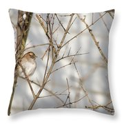 Amongst The Branches Throw Pillow
