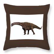 Ampelosaurus On White Throw Pillow
