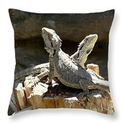 Amphion And Zethus Throw Pillow