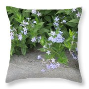 Amsonia Tabernaemontana Throw Pillow