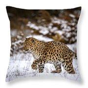 Amur Leopard Walks In A Snowy Forest Throw Pillow
